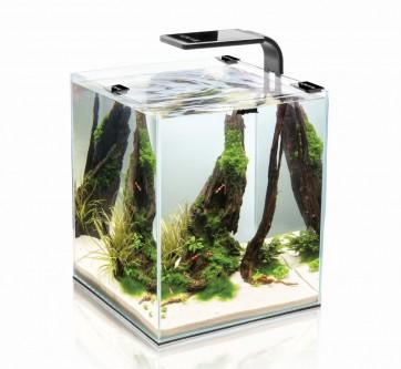 AquaEl, Shrimp Set Smart