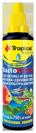 Tropical, Bacto-Active, żywe kultury bakterii