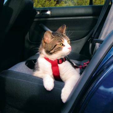 Trixie, Szelki samochodowe dla kota