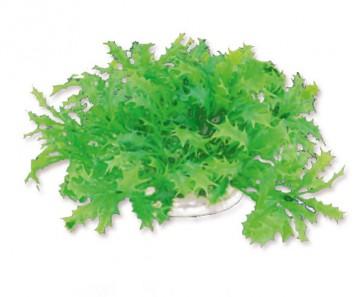 Happet, Roślina sztuczna 1F22, 10cm