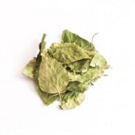 Tivo, Liść brzozy, 150g