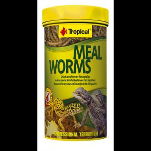 Tropical, Meal Worms, suszone larwy mącznika młynarka dla gadów