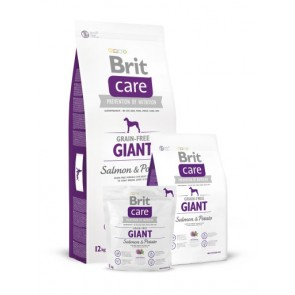 Brit Care, Giant, Salmon & Potato
