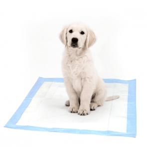 Happet, Dog Mats, maty treningowe, podkłady