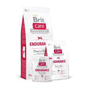 Brit Care, Endurance
