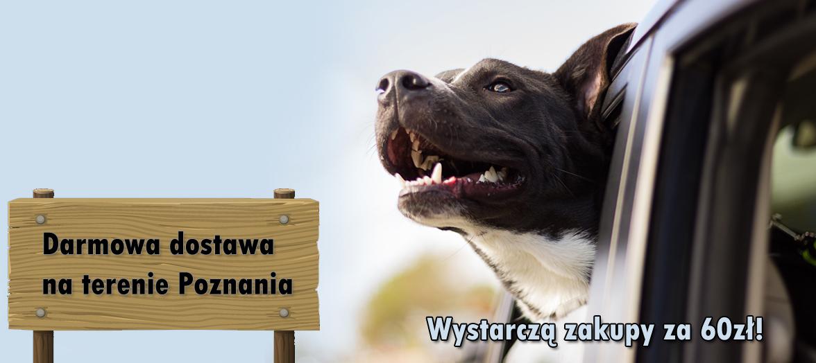 Darmowa dostawa na terenie Poznania